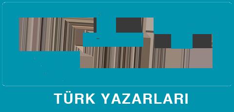türk yazını
